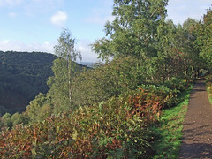 Autumn in Teign Gorge, from Hunter's Path (Philip_Goddard) Tags: europe unitedkingdom britain british britishisles greatbritain uk england southwestengland devon dartmoornationalpark drewsteignton teignvalley teigngorge hunterspath views scenery landscapes valley hill woodland wood autumn bracken