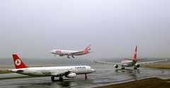 couple of different colored LTU A330s at a foggy DUS/EDDL (Jaws300) Tags: düsseldorf airport ltu luftransport unternehmen airbus a321 a330 a332 a330200 a333 a330300 dusseldorf germany ramp apron taxiing taxiway departure takeoff airplane aircraft airlines düsseldorfairport jet departing dus eddl parked a320 rain rainy wet fog foggy soggy grey ugly weather wx bad classic colours retro tcjri tcjrh turkish tk turkishairlines turkey deutschland visibility reduced low thy tcjrk
