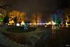 WiSch_180202_068.jpg (WiSch | Foto) Tags: wischfoto nachtaufnahmen orte mannheim städte licht beleuchtung luisenpark winterleuchten night nacht park garten