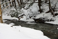 Smith's Brook Falls (kimshand) Tags: ns wentworth wentworthvalley canada water winter winterbeauty waterfalls waterfall stream river brook nature beauty snow ice trees