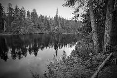 Summer Holiday 2017 (Sami Niemeläinen (instagram: santtujns)) Tags: suomi finland kuusamo oulanka oulangan kansallispuisto national park luonto nature hiking trekking retkeily matkailu maisema landscape