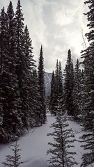 A gloomy start to the day in Johnston Canyon. (L. Brannan) Tags: nature canada canadian canyon discover explore snow snowfall winter wintermoments winterlovers winterwonderland alberta cold mountain mountains sky clouds hike hiking