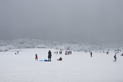 the day in Sichuan (Madeline 瑪德琳) Tags: nikon d3200 digital film travel nature snow
