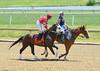"2017-06-11 (24) r2 Julian Pimentel on #7 Great Smoke (JLeeFleenor) Tags: photos photography md maryland marylandhorseracing laurelpark laurelracecourse jockey جُوكِي ""赛马骑师"" jinete ""競馬騎手"" dżokej jocheu คนขี่ม้าแข่ง jóquei žokej kilparatsastaja rennreiter fantino ""경마 기수"" жокей jokey người horses thoroughbreds equine equestrian cheval cavalo cavallo cavall caballo pferd paard perd hevonen hest hestur cal kon konj beygir capall ceffyl cuddy yarraman faras alogo soos kuda uma pfeerd koin حصان кон 马 häst άλογο סוס घोड़ा 馬 koń лошадь"