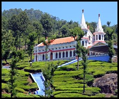 Velankanni Church @Karumalai (Indianature st2i) Tags: valparaivelankannichurch karamalai valparai anamalais anamallais anamalaitigerreserve westernghats tea shola rainforest nature indianature 2018 january february tamilnadu india life wildlife plantation forest people estate