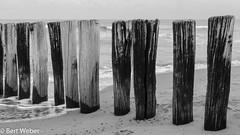 Unbenannt (weber.bert) Tags: 169 nl walcheren zeeland analogefotografie blackwhite inbiancoenero noiretblanc grauwertabstufungen sw