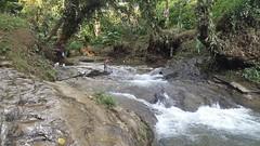 IMG-20171230-WA0015 (chocoenlaweb.com) Tags: chocó chocoenlaweb quibdó turismo colombia pacífico tutunendo naturaleza bahíasolano nuquí saldefrutas cascada ichó