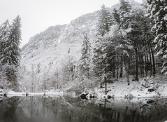 Snow Forest and Pool in the French and Italian Alps (Capchure.ch) Tags: snow forest winter alps alpine trees ponds wilderness mountains