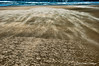 Sand Spirits 1 (Michael Guttman) Tags: beach sand wind blowingsand sandclouds nyebeach newport oregon ocean ripples sandripples water