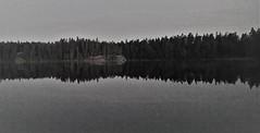 WP_20150620_00_13_12_Pro (www.ilkkajukarainen.fi) Tags: suomifinnland eu europa suomi100 lake järvi vesi water blackandwhote monochrome mustavalkoinen uusimaa juhannus kesä scandinavia