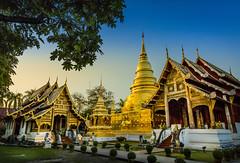 Temple Chiang Mai (♥siebe ©) Tags: 2018 buddhism chiangmai siebebaardafotografie thai thailand wat temple wwwsiebebaardafotografienl ประเทศไทย วัด เชียงใหม่ เมืองไทย ไทย architecture watphrasingh วัดพระสิงห์วรมหาวิหาร