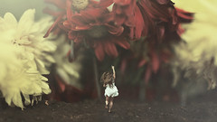 Safety (keren_stanley) Tags: conceptual expressive fineartphotography conceptart surreal fineart flowers forestfantasy photomanipulation composition aliceinwonderland alicemadness fantasylandscape fantasy whitedress