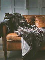 Qual è il divano che fa per voi? Scopri lo stile che più ti si addice! (Cudriec) Tags: arredare arredo casa design divano faidate interiordesign soggiorno stileretrò vintage