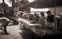 ontario tobacco harvest (cpt. willard) Tags: 1988 canada ontario ontarioyourstodiscover burford primingmachine tablegirls boatdriver kiln brantcounty farm summer sewingtable tobaccoleafs kilnhanger conveyor
