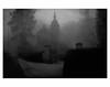 U N T I T L E D  [ F O G  # 10 ] (bruXella & bruXellus) Tags: parcduden brüssel bruxelles brussels brussel belgien belgique belgium belgië leicax1 blackwhite bnw monochrome brume brouillard nebel fog grain grainy