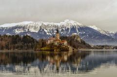 Come in una fiaba (forastico) Tags: forastico d7000 slovenia bled lago isola montagne
