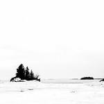 Winter Starkness thumbnail