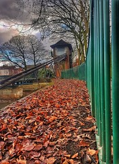 Start the weekend, with a Splash!!! 19/1 😀😀 (LeanneHall3 :-)) Tags: 31daysofjanuary challenge splashboat 1929 lake eastpark hull kingstonuponhull railings angles curves trees branches leaves orange green landscape samsung galaxys7edge