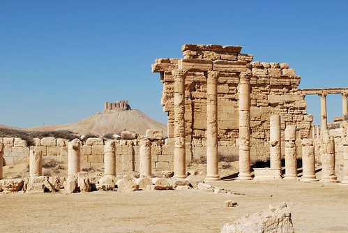 Syrie-Palmyre  (14)