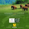 #Wayanad Wildlife Sanctuary is the second largest #wildlife #sanctuary in Kerala and comprises of rare as well as endangered species of both flora and fauna. It is surrounded by the protected areas of Mudumalai in TamilNadu as well as Nagarhole and Bandip (nucleusproperties) Tags: beautiful life luxuryhotel style kerala wayanad resort tourism sanctuary lifestyle india luxury comfort nature architecture hillstation adventure interior hotel gorgeous design elegance environment wildlife beauty travel building exquisite view atmosphere