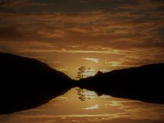 Gold (Tobymeg) Tags: sky mirrored clou scotland tree made panasonic dmcfz72