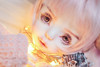 CSC_0185 (nekophoenix) Tags: liam bjd dollzone flowerjunior yabi boy cute pastel pink gold male