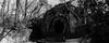 Parco Dei Mostri - Bomarzo n°1 (lilly.la.roux) Tags: analogue analog analoguephotography analogic blackandwhite 35mm 35mmcamera 35mmfilm 35mmroll 35mmphoto lomography lomo horizonkompakt horizon park panorama statues monster parcodeimostri bomarzo viterbo italy strange villa path labirinth trees tree peacepath animals statue art grey kodaktmax400iso kodak iso