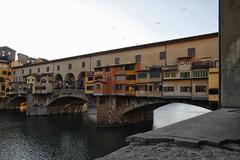 "Florence ( big_biffi ) Tags: florence firenze uffizigallery italy toscana uffizi rinascimento renaissance duomo brunelleschi belltower giotto michelangelo's""david"" david"