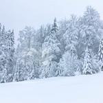 Winter in den Bergen thumbnail