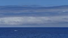 blau, blau, soweit das Auge reicht (marionkaminski) Tags: madeira portugal insel isla island ocean blau blue wolken clouds nubes nuages