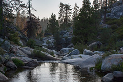 Nature at its best (njaaames) Tags: california sequoianationalpark sequoia trees forest stream reflection river creek