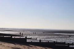 IMG_6910 (cindyincidentally) Tags: whitstable kent kentcoast britishbeach seaside seashore seasidetown