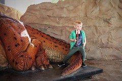 WesleyZoo2 (ONE/MILLION) Tags: phoenix arizona desert zoo dinosaursinthedesert cindykelly wesley outdoors dinosaurs animals rock saguaro cactus williestark onemillion kids family fun entertainment