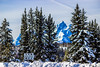 Wyoming-GrandTetonNP-Christmas2015-123.jpg (Chris Finch Photography) Tags: landscapephotography snow utahphotographer tetons chrisfinch photographs landscapephotographs grandtetonnationalpark wyoming jacksonlake christmas wwwchrisfinchphotographycom chrisfinchphotography