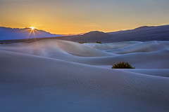 Mesquite Sunrise (Kirk Lougheed) Tags: california deathvalley deathvalleynationalpark funeralmountains mesquitedunes mesquiteflat usa unitedstates dawn dune landscape mountain nationalpark outdoor park sand sanddune sunrise