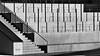urban viniculture (heinzkren) Tags: wien vienna aspern seestadt schwarzweis blackandwhite monochrome bw sw panasonic lumix stairs treppe stiege stufen wein weinbau beton concrete architektur architecture reben vino vin