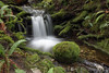 Pure Tranquility (PamsWildImages) Tags: waterfall nature wilderness moss pamswildimages beautiful bc canada sundaylights