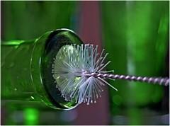 Bottle Brush (jesse1dog) Tags: macromondays inabottle brush spoutbrush bristles bottle green gm1 pentax110 70mm desktop extensiontube bokah