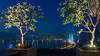 Taj View (Star Wizard) Tags: mumbai maharashtra india in