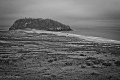 IMG_3464-2 (CornellBurgessphotography) Tags: seascapes bigsur pointlobos carmelbay california pacificocean montereybay cornellburgess