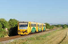 Regionoha by Nikolaj Šeršeň - 814.206 ako osobný vlak z Hodonína do Velkej nad Veličkou sa blíži k Blatnici pod Svatým Antonínkem