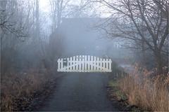 foggy weather............ (atsjebosma) Tags: foggy mistig pad house farm huis boerderij hek fence bomen atsjebosma groningen pasop thenetherlands nederland hff happyfencefriday