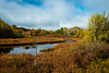 as the day unfolds (Port View) Tags: fujixe2 ellershouse novascotia canada cans2s 2017 fall autumn water stream bog colour color trtees sky clouds blue sun sunlight