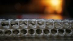 Skid Pad (bamboosage) Tags: sony e 3560 macro