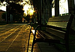 Last spring (portalealba) Tags: zaragoza aragon españa spain sunset sol street portalealba pentax pentaxk50 atardecer