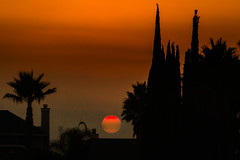 D18448E7 - Hazy Sunset Above The Rooftops (Bob f1.4) Tags: sunset haze hazy orange sun sky silhouette palm cypress trees rooftop chimney discovery bay ca california red