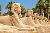 Avenida das Esfinges - Luxor (Sergio Zeiger) Tags: templo amon luxor egito áfrica