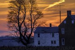 Sunset at Bombay Hook (crabsandbeer (Kevin Moore)) Tags: winter abandoned bombayhook delaware geese landscape moon nature waterfowl sunrise sunset sun color farm farmhouse rural evening antenna tvantenna orange