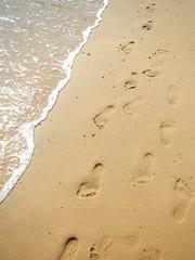 034/365: out to sea (trace) (Michiko.Fujii) Tags: sand footprints footprintsinthesand coast shoreline onthebeach outtosea watersedge eastcoast beachtime