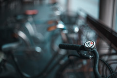 I love my bike _ #36/100 Bike Project (pierfrancescacasadio) Tags: bicicletta gennaio2018 bicycle 100bicycles project detailed details bikes bike cycling 100bicyclesproject 24012018840a4871 ringthebell flickrfriday bell campanello 50mm bokeh